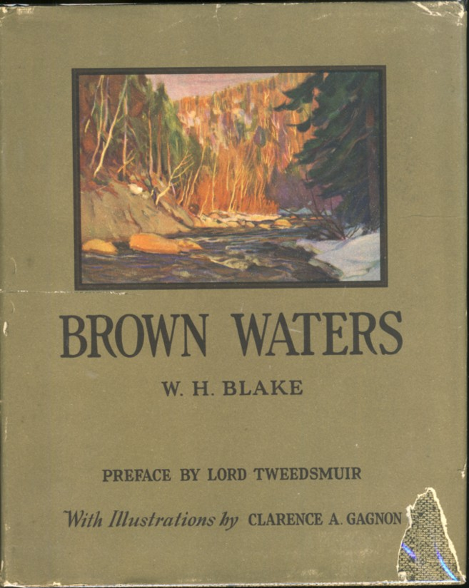 Image for Brown Waters Illustrations by Clarence A. Gagnon