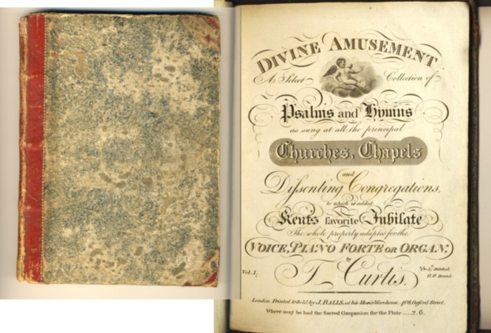 Image for Divine Amusement A Select Collection of Psalms and Hymns as sung at all the principal Churches, Chapels and Dissenting Congregations, . . (Volumes I & II bound in I)
