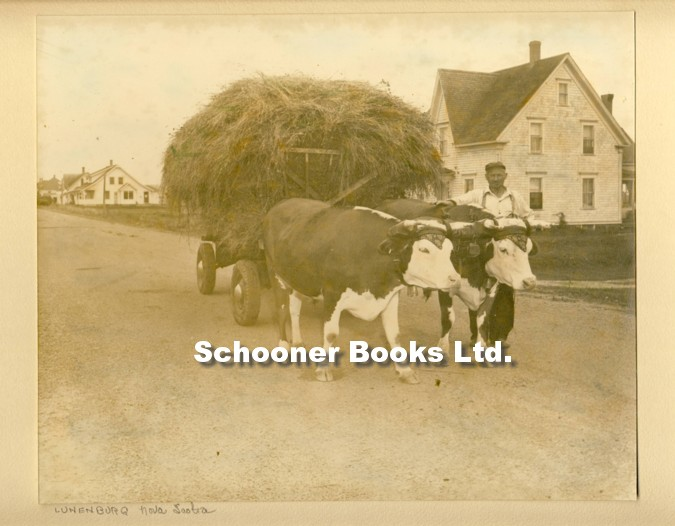 Image for Photograph of Oxen Team in Lunenburg, Nova Scotia, c. 1940