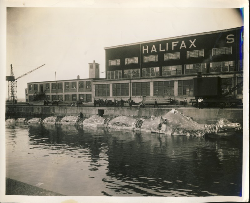 Image for Untitle (A very large dragon boat beside the dock at Halifax Shipyards)