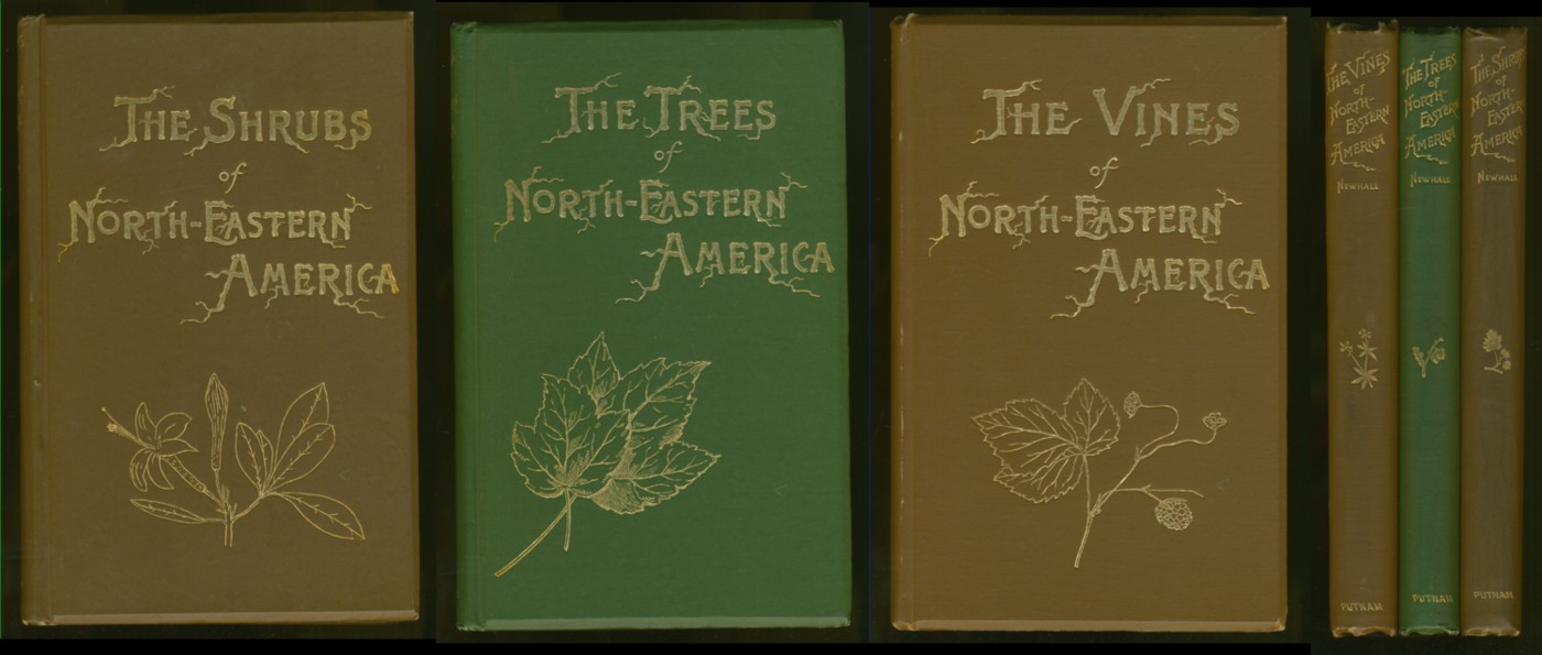 Image for The Trees of Northeastern America (together with) The Shrubs of Northeastern America & The Vines of Northeastern America (in 3 vols)
